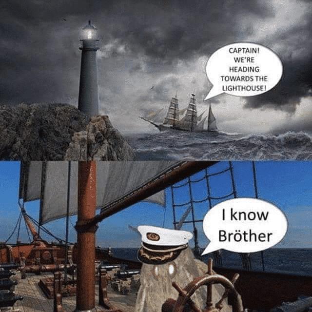 Lighthouse moth memes