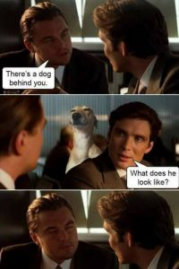 There's a dog behind you Inception meme
