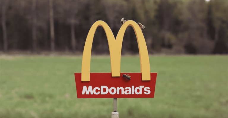 Complaints raised about the McDonalds for Bees
