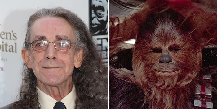 Peter Mayhew Chewbacca Star Wars Series